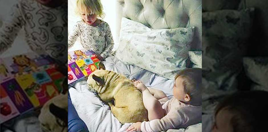 Jack Osbourne's children and dog